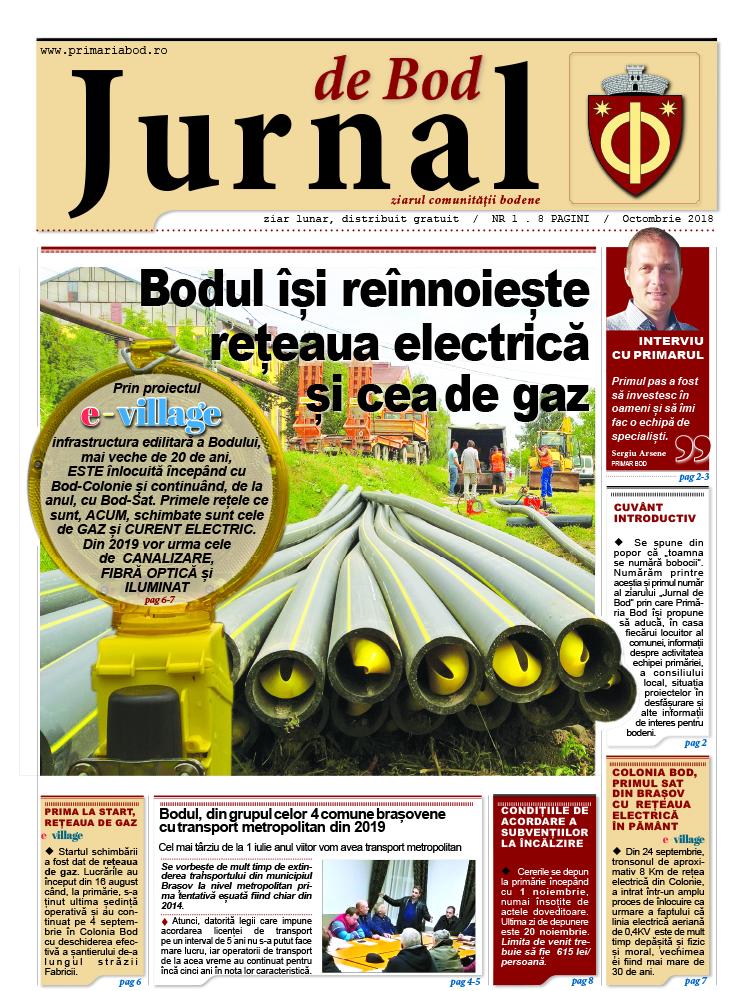 Jurnal1