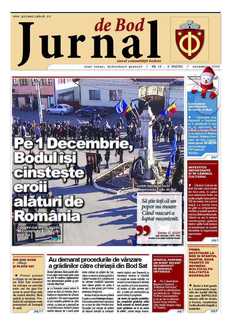 Jurnal13